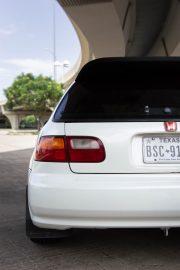 plaque d'immatriculation arrière d'une voiture